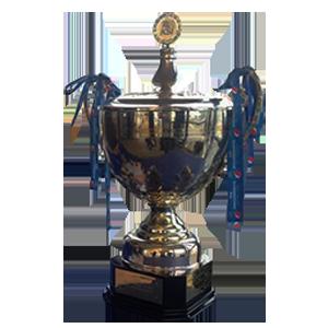 Úrvalsdeild trophy
