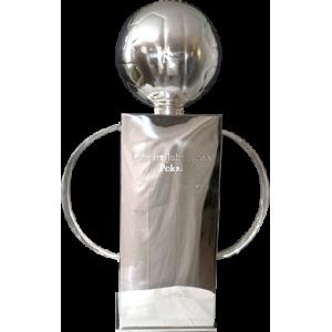 Allsvenskan trophy